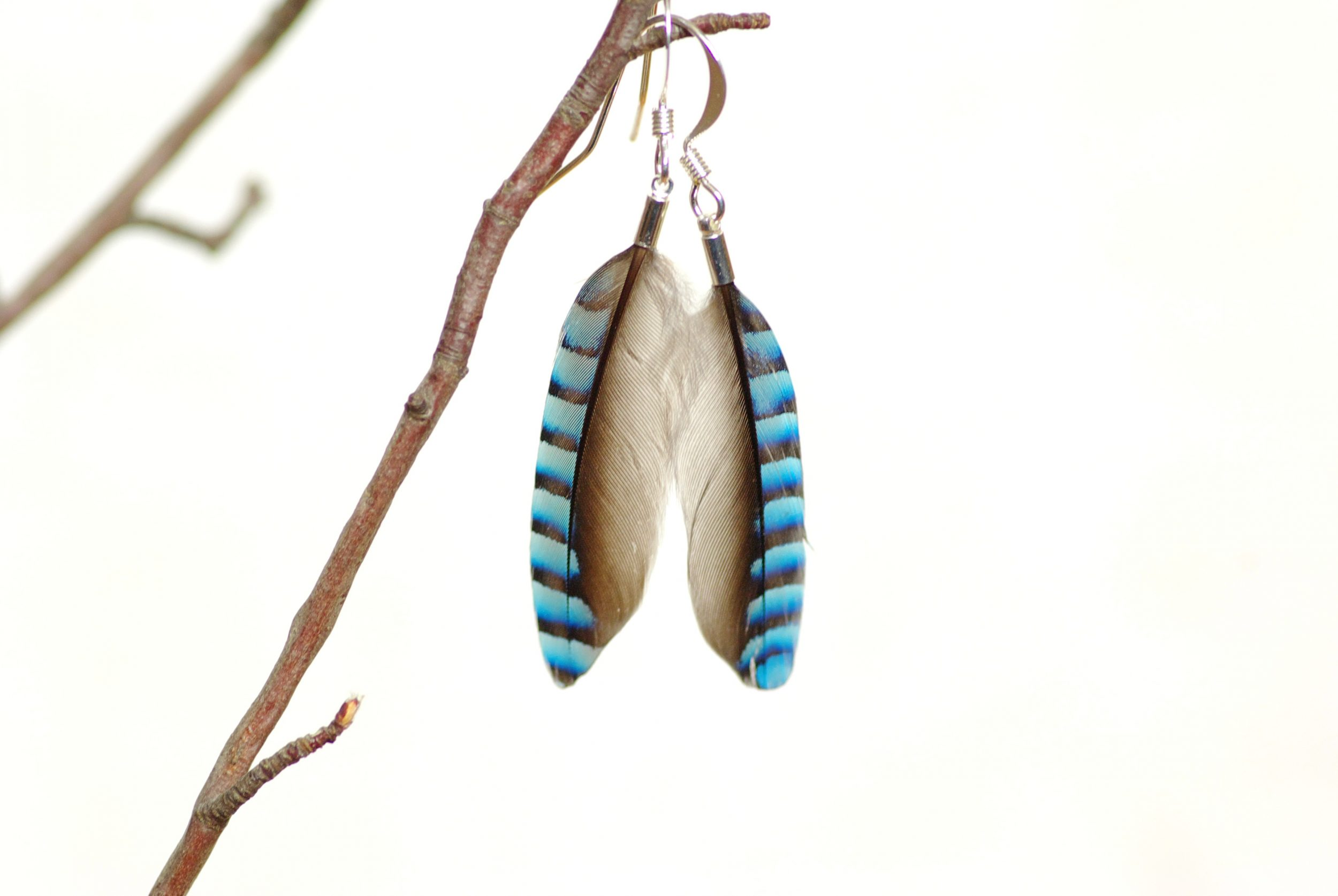 boucles d'oreilles en plumes rayées . FInes rayures bleu dégradé et noir. Montage très épuré sur des crochets argentés