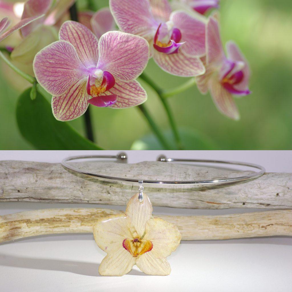 Un collier avec un pendentif orchidée, derrière on voit l'orchidée qui a produit la fleur