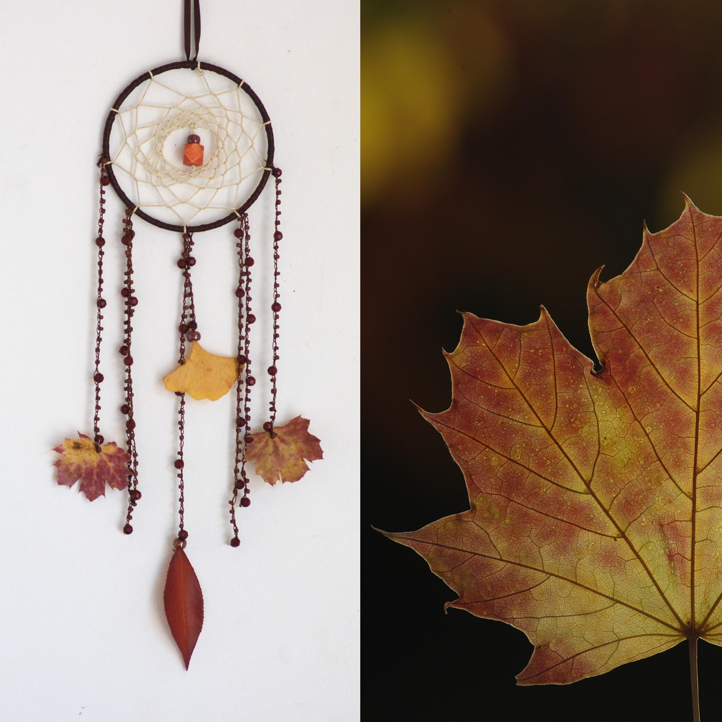 composition de deux photos. Création : un dreamcatcher dont les plumes ont été remplacées par des feuilles , inspiration :une feuille d'automne en gros plan