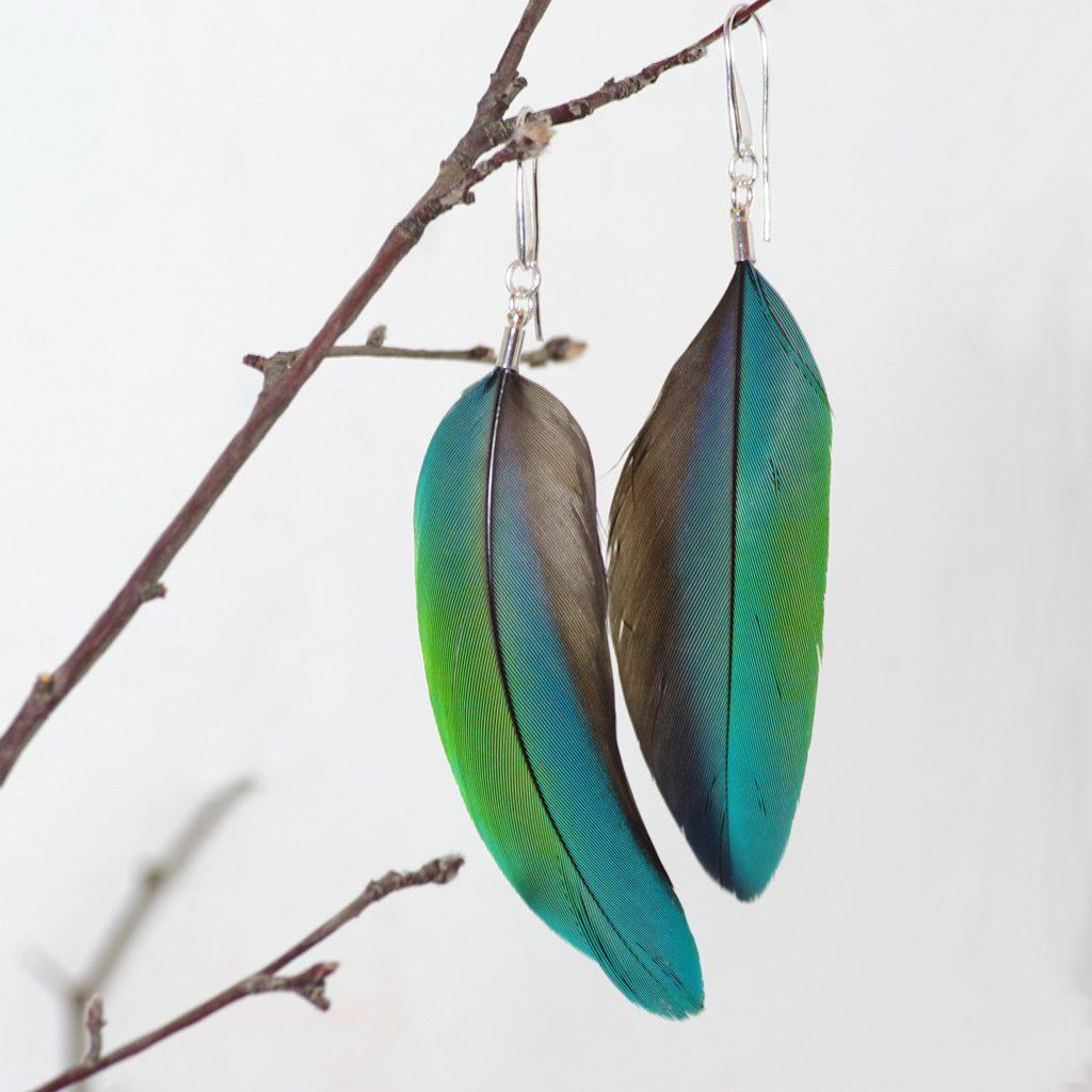 Une paire de boucles d'oreilles en plumes naturelles Bleu-vert sont suspendues à une brindille