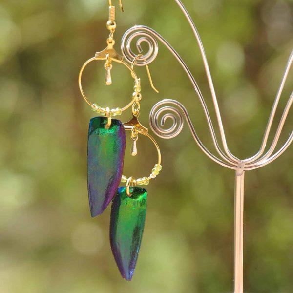 boucles d'oreilles avec des élytres de scarabées verts aux reflets bleus et des anneaux dorés. Photographiés sur fond de nature.