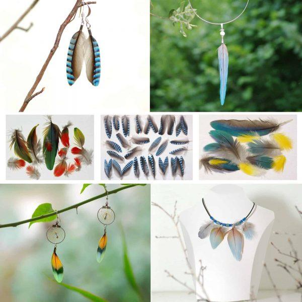 Bijoux plumes