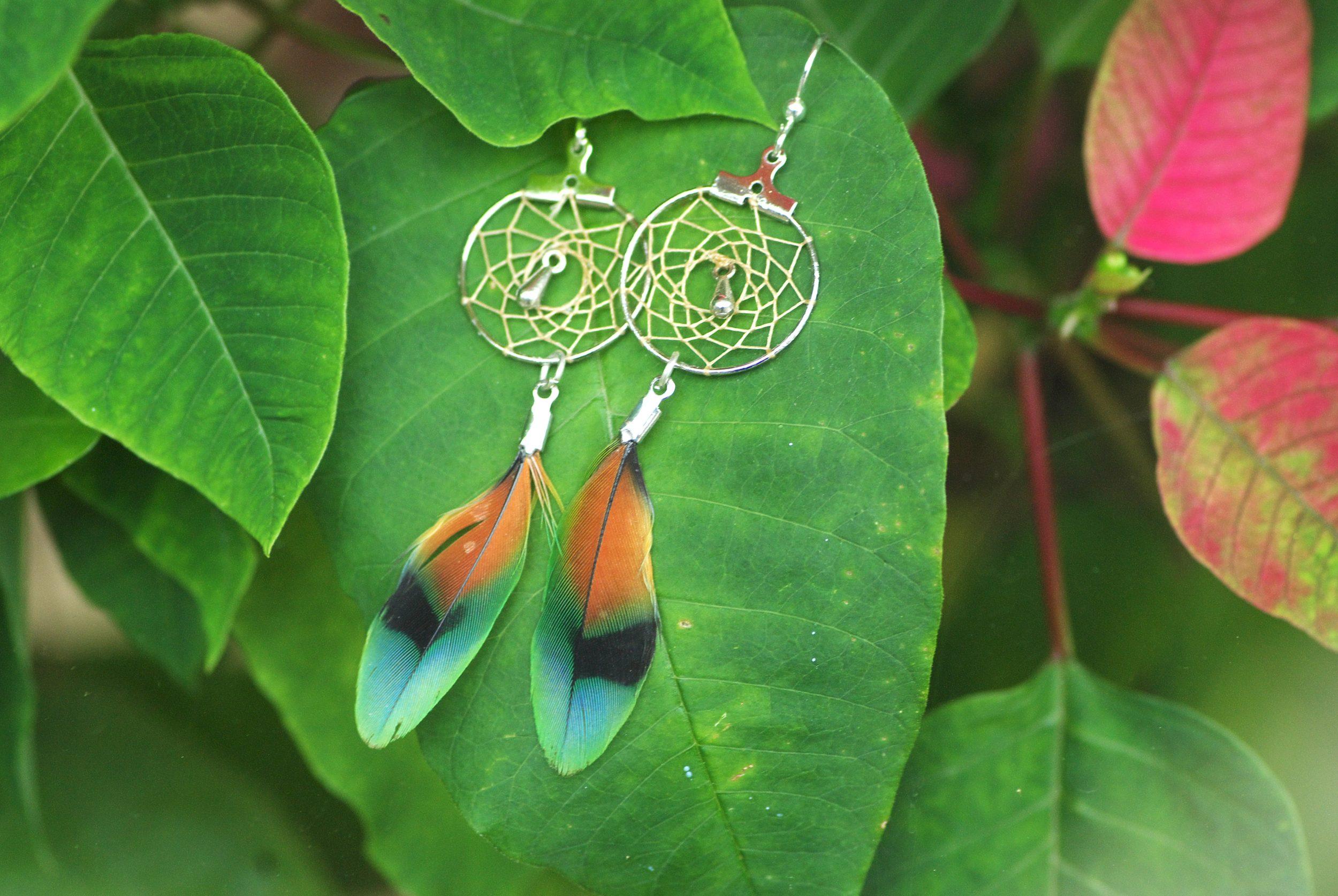 Boucles d'oreilles dreamcatcher à plumes multicolores, fond de verdure
