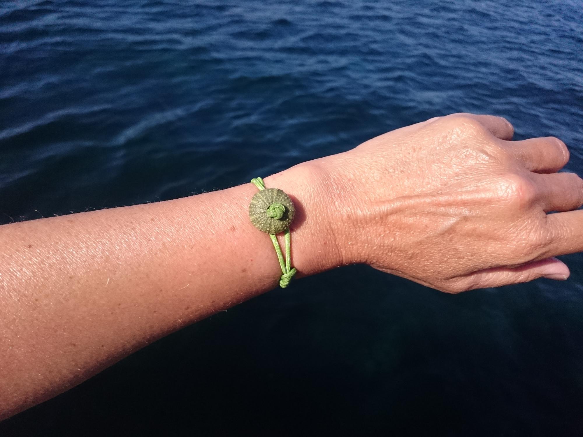 bracelets en cordelette de type marin. petit oursin vert. photo porté sur fond de mer