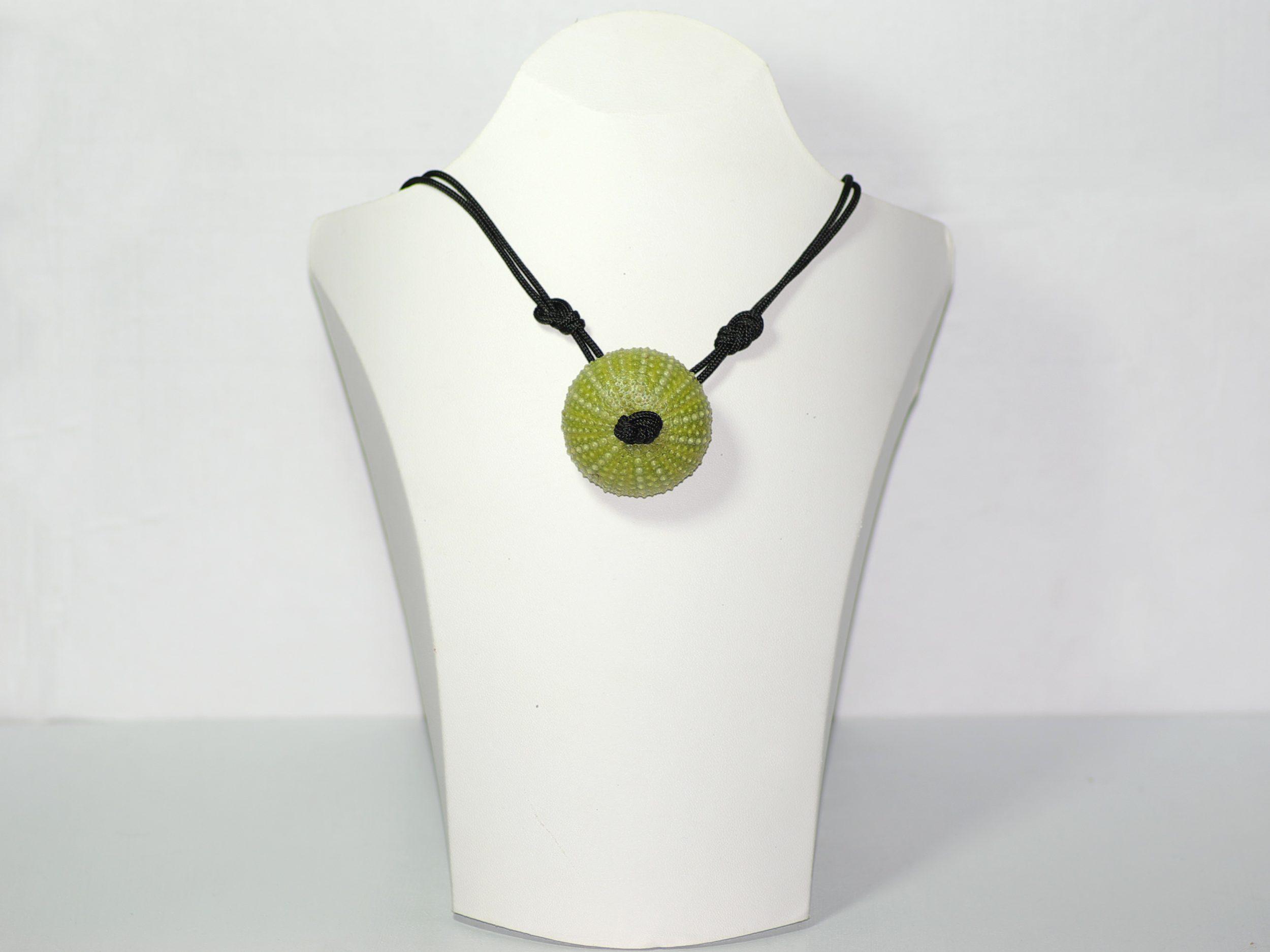 oursin vert transformé en pendentif sur une cordelette noire nouée type marine