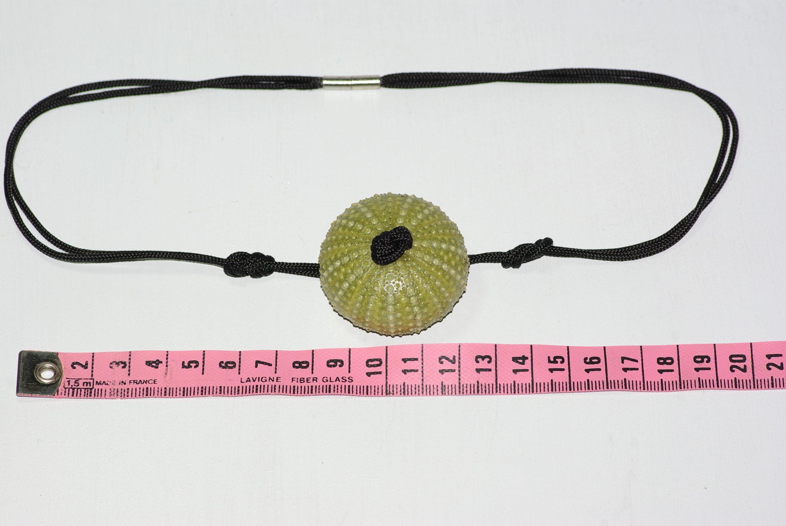 Collier avec un pendentif oursin vert sur une cordelette noire en polyester nouée façon marine. mesures