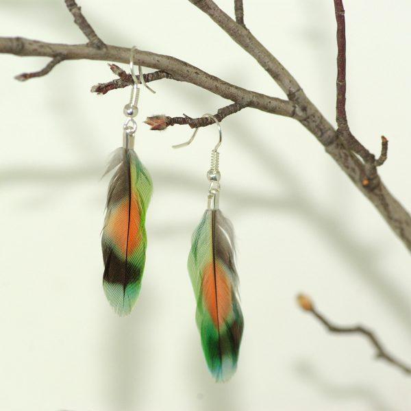 plume multicolore : tache rouge entourée de vert, bleu et noir, montage minimaliste en boucles d'oreiles, orésenté accroché à une branche