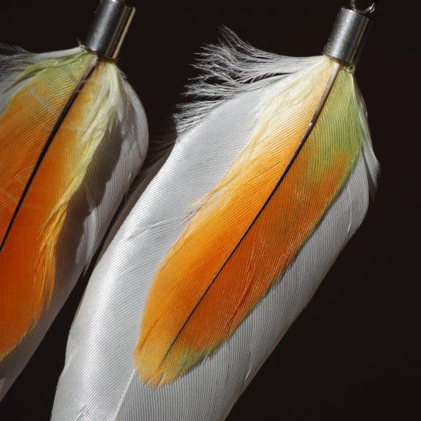 pumes naturelles très contastées : une petite plume orange et vert sur une grande plume blanche , pourd es boucles d'oreilles très gaies et originales