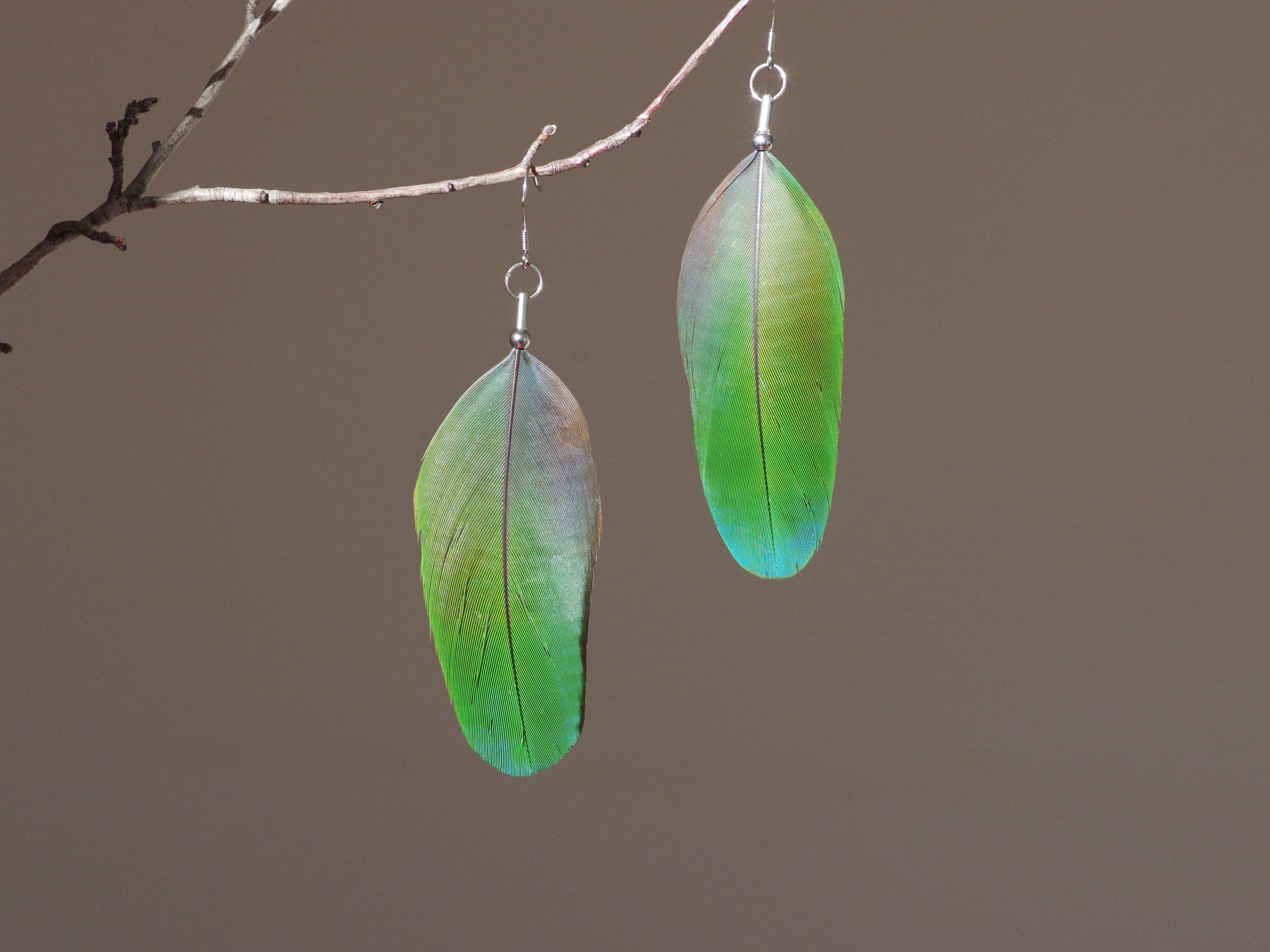 boucles d'oreilles à grandes plumes vertes aux reflets bleu-verts, montées de façon minimaliste