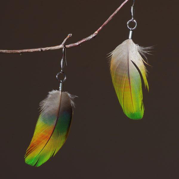 boucles d'oreilles à plume vert-jaune. Ces plumes ont des nuances vert, jaune, orange