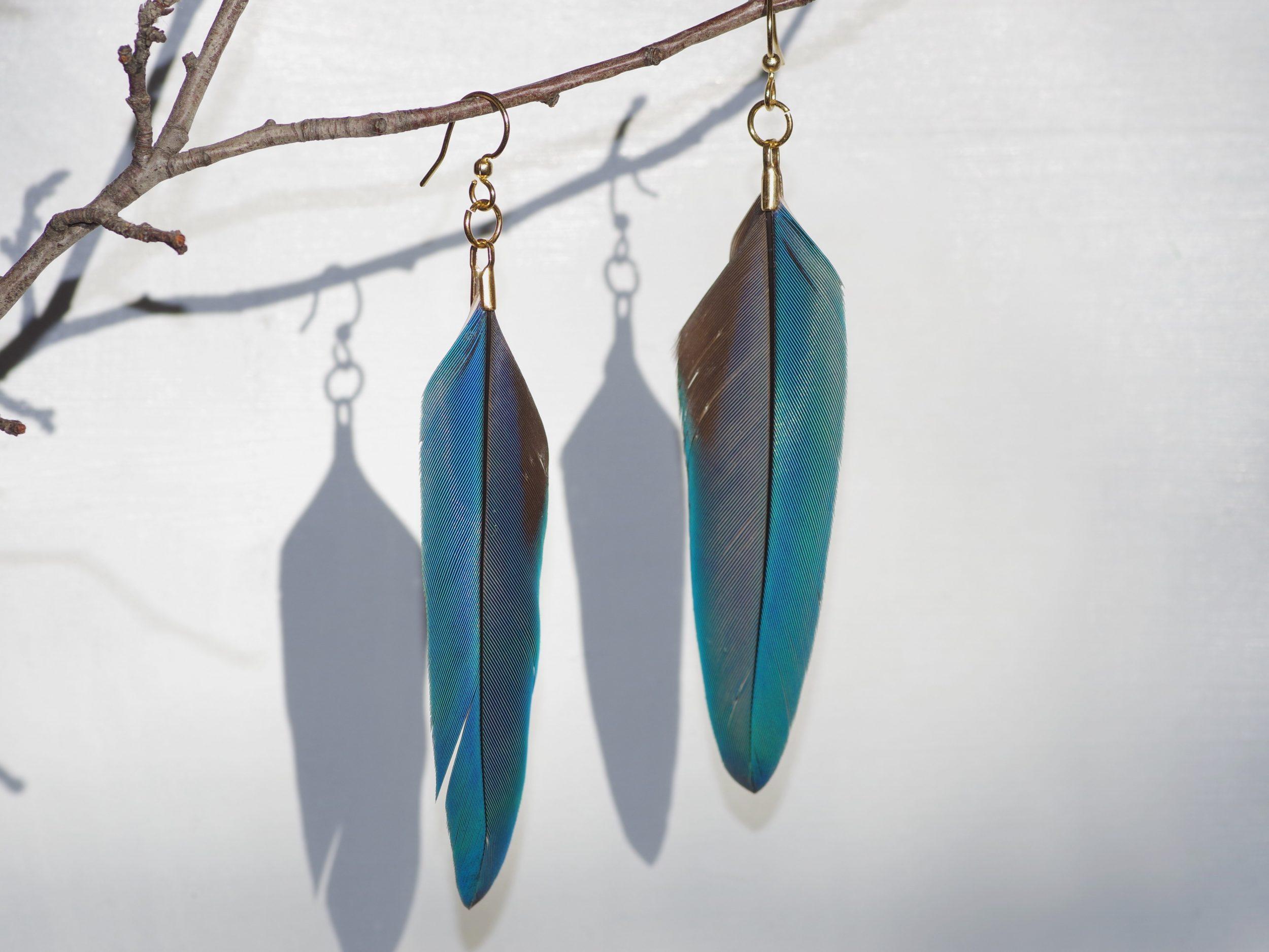 boucles d'oreilles à grandes plumes d'ara bleues, crochets dorés