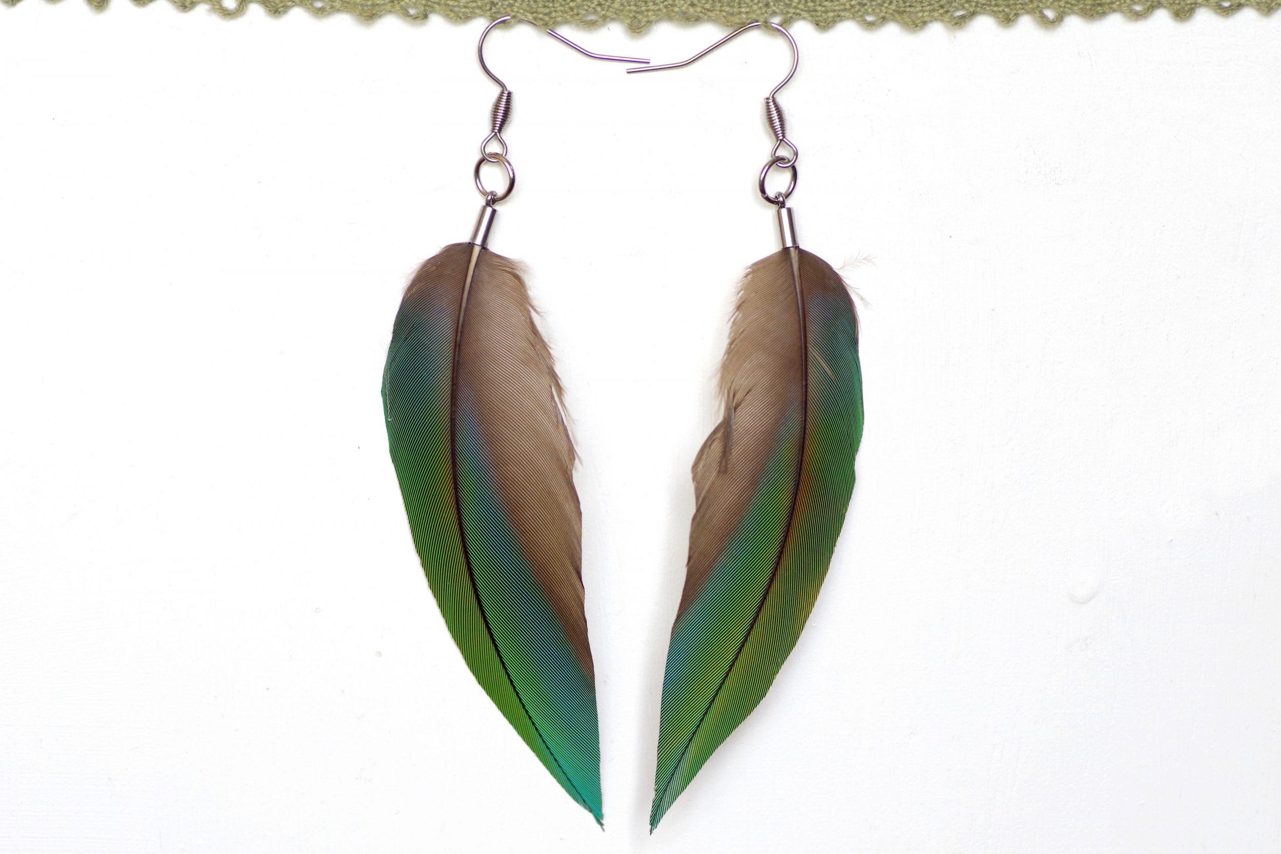 boucles d'oreilles à grandes plumes vertes avec des nuances bleues et une zone grise