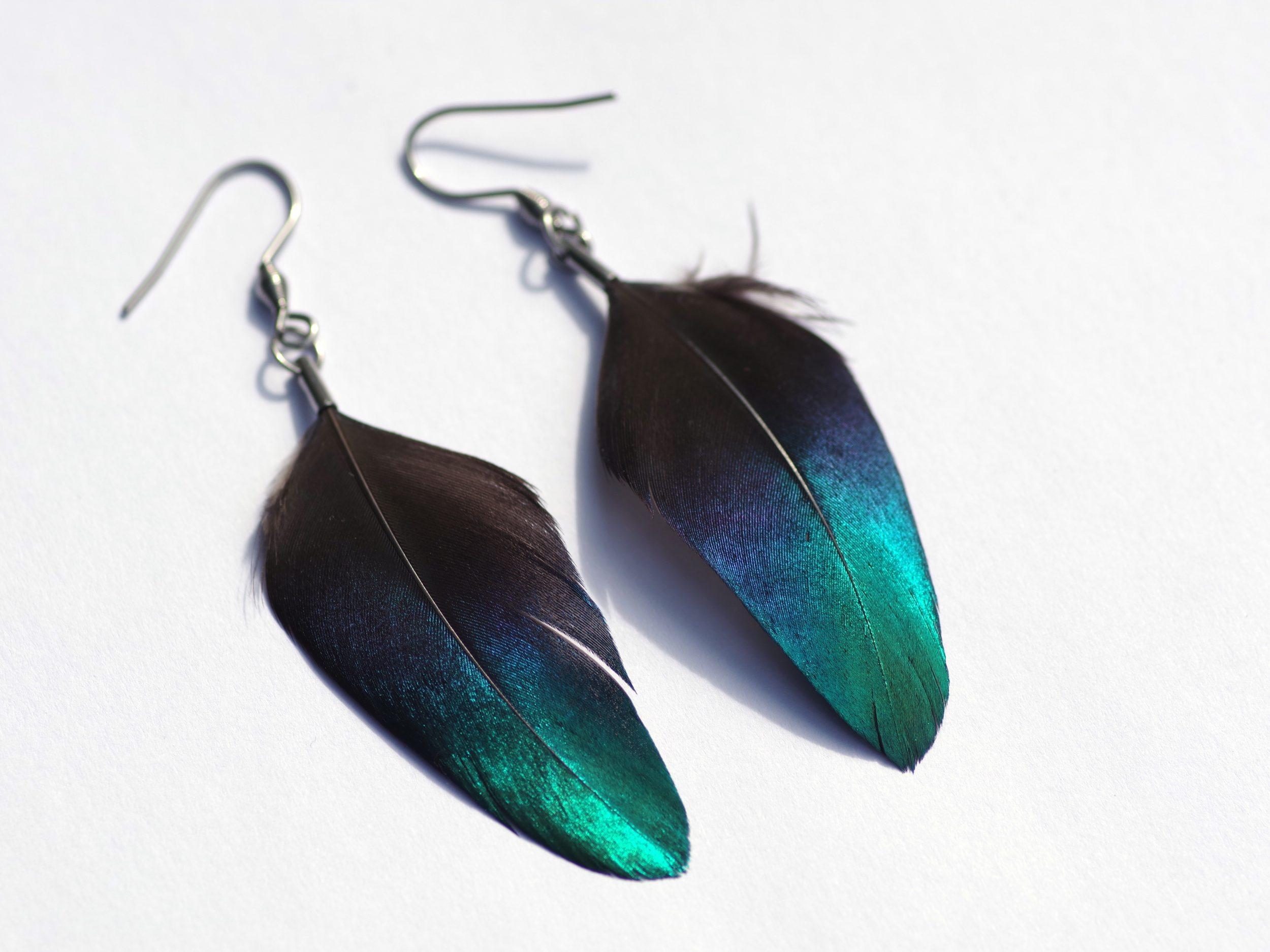 boucles d'oreilles avec une plume à reflets bleus très brillants dans la lumière