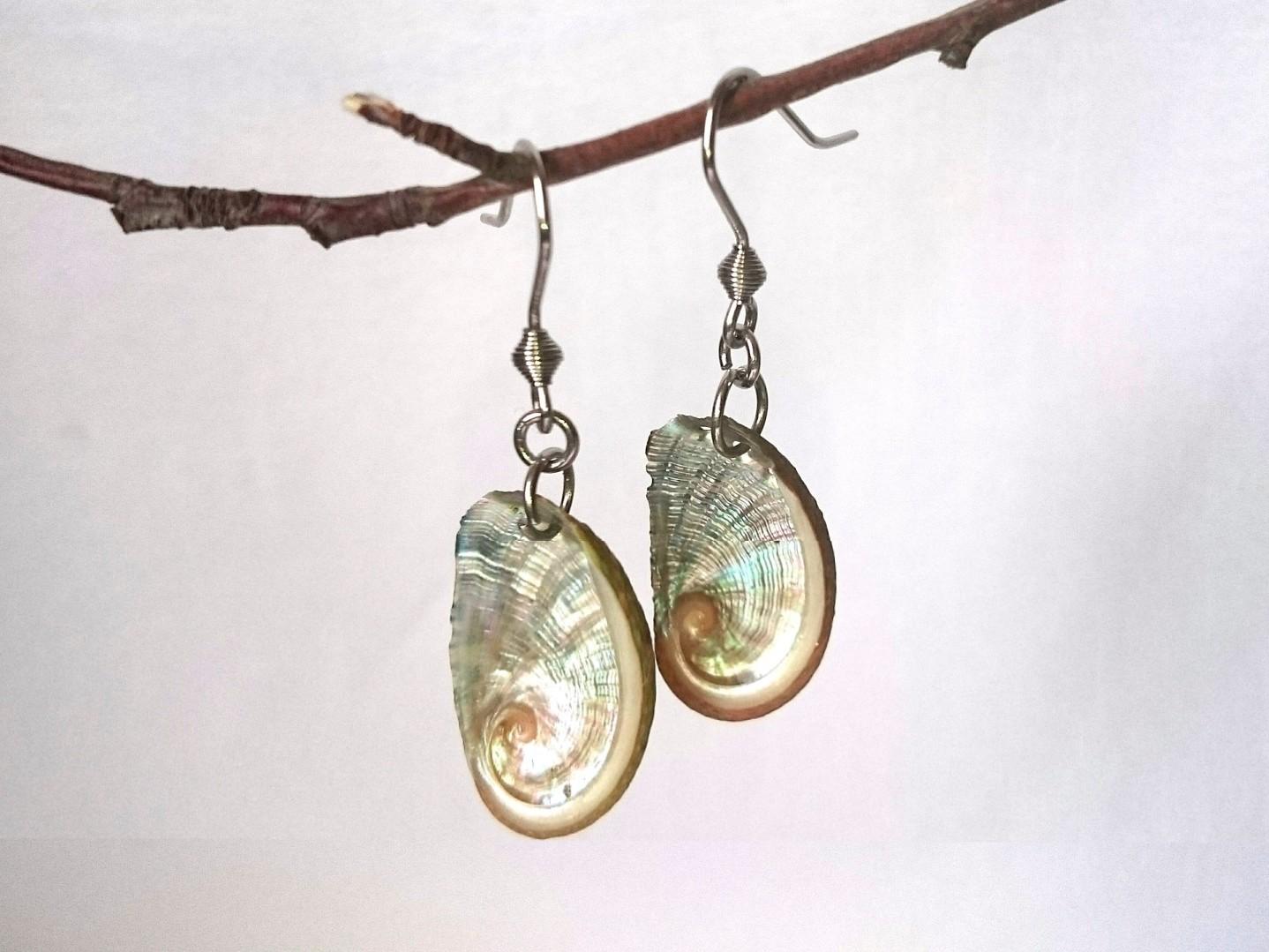coquillages brillants : ormeaux sur des boucles d'oreilles