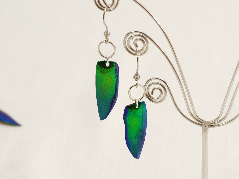Boucles d'oreilles scarabées vetrs à reflets métallisés bleu verts
