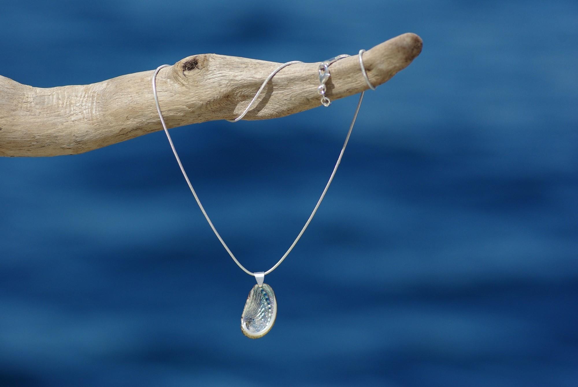 ormeau à la nacre très brillante argentée, sur une chaîne argentée, supendu devant la mer