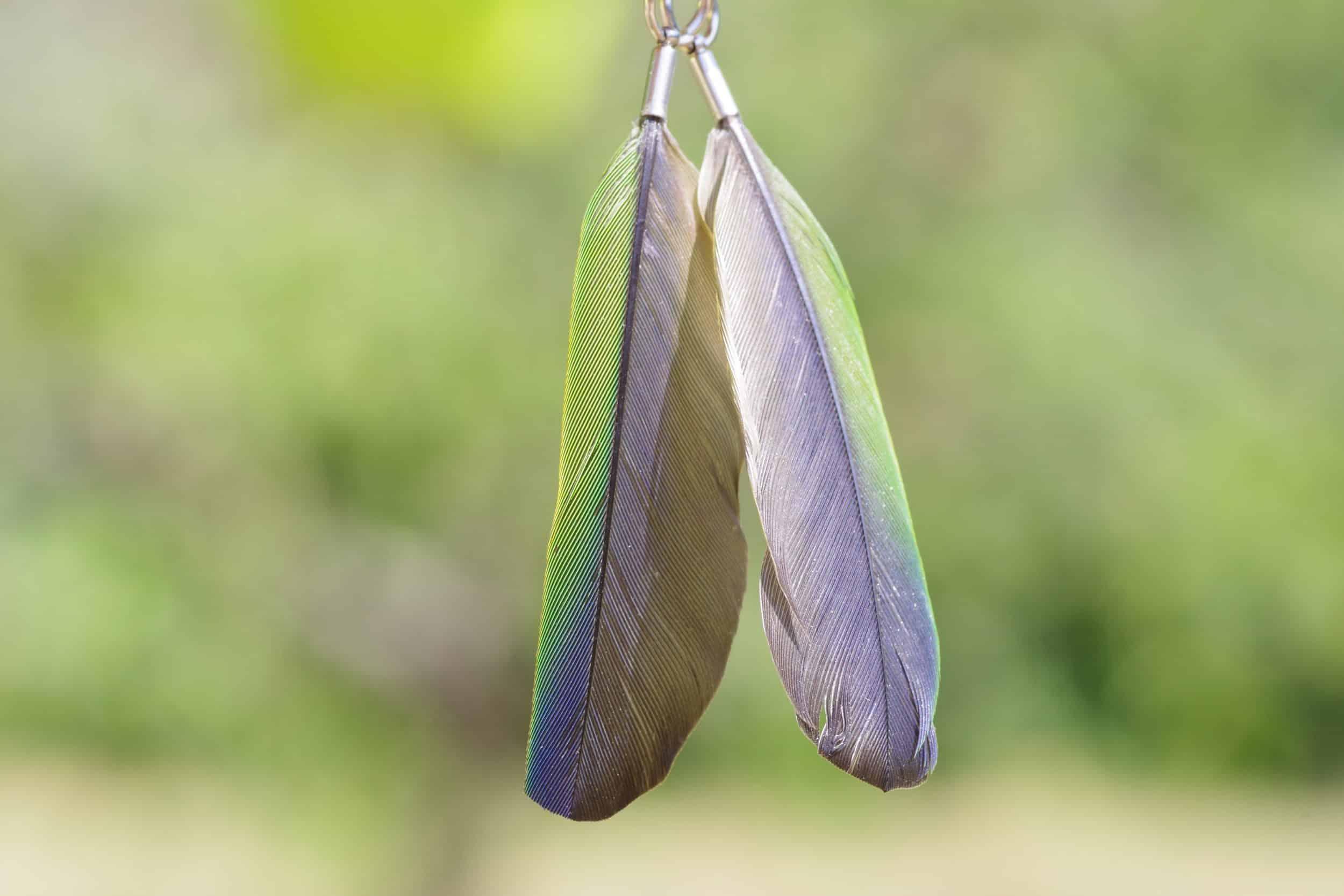boucles d'oreilles à plume bleue et verte, montage tout simple