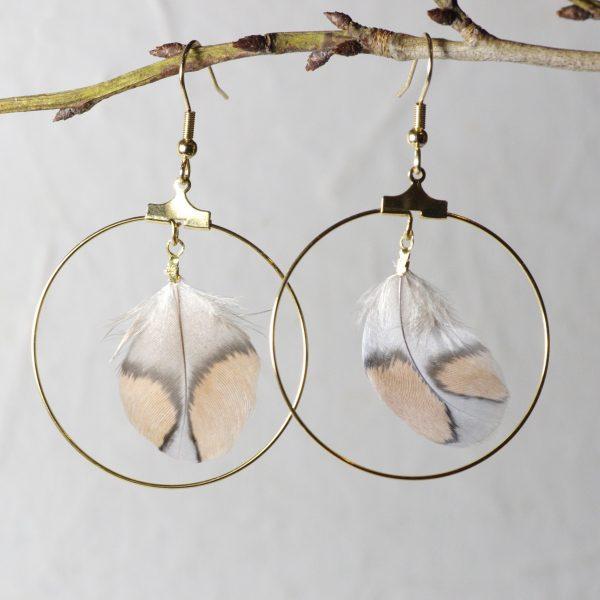 paire de boucles d'oreilles créole dorées et plumes : une plume rare aux étonnantes couleurs gris et nude dans un grand anneau doré