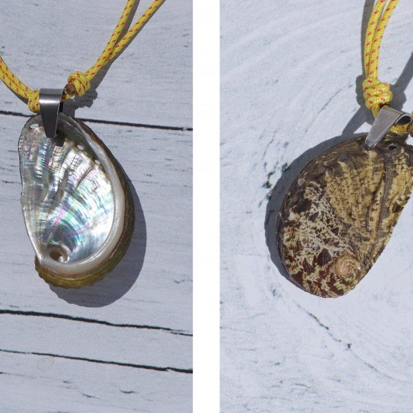 pendentif coquillage ormeau sur bout marin jaune, à porter recto ( brun-ocre ) ou verso (nacre très brillante)