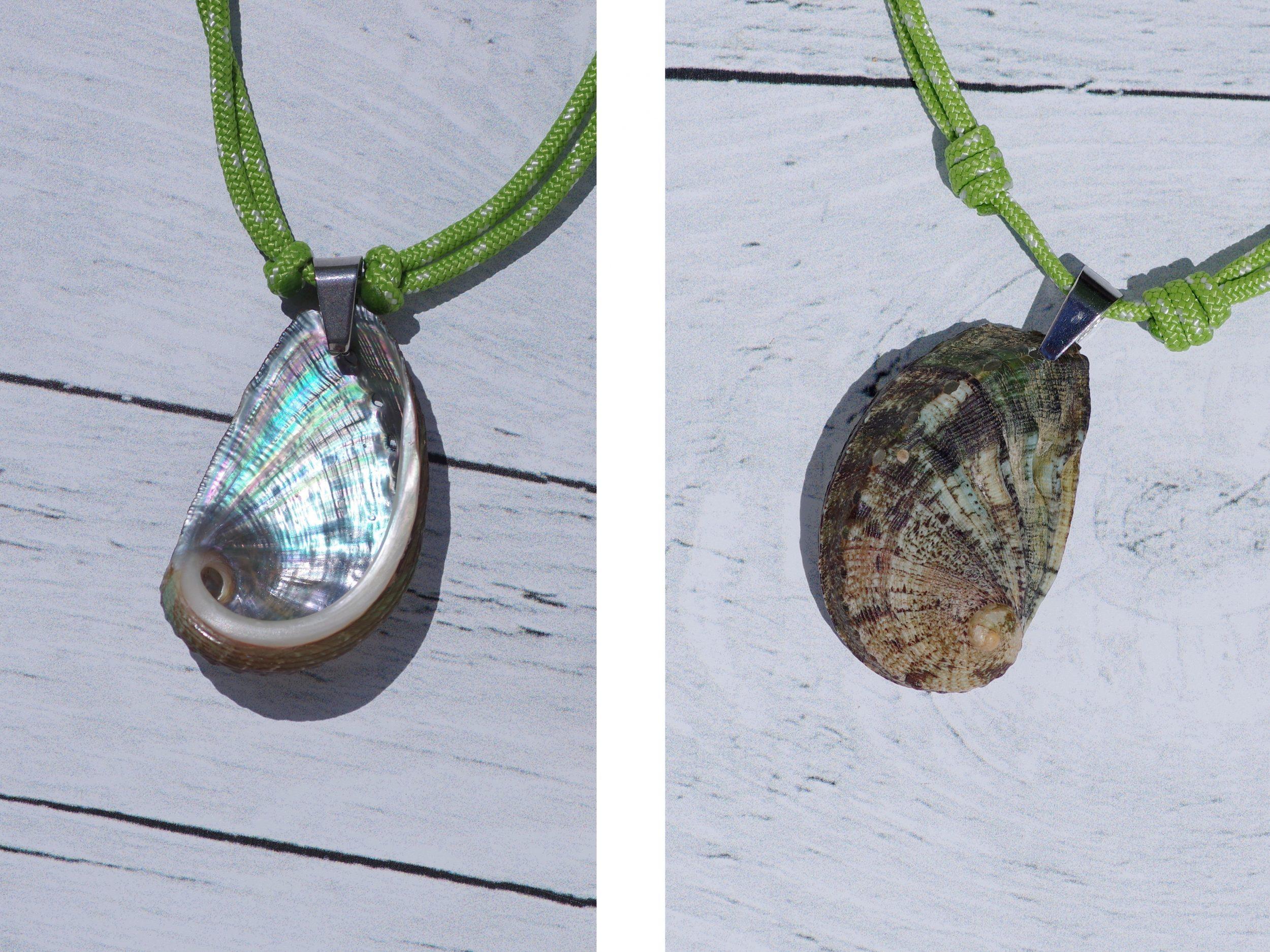 pendentif coquillage ormeau sur cordelette marine verte, à porter recto ( brun-vert ) ou verso (nacre très brillante)