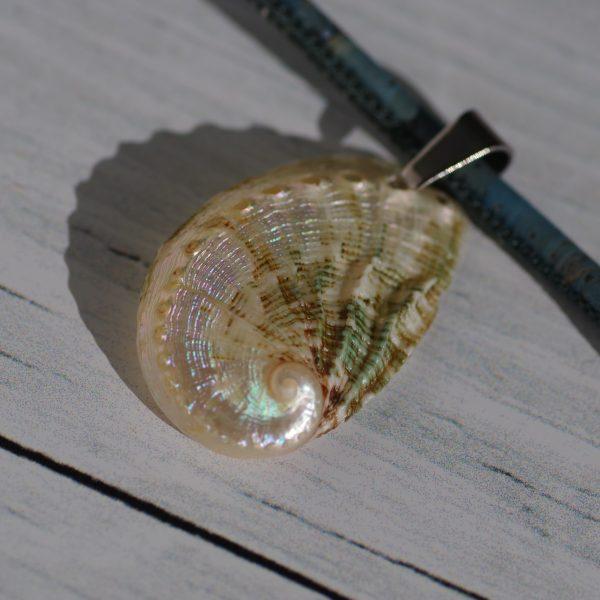 pendentif coquillage : ormeau nacré, poli avec un bel effet de mati-=ère et des nuances de couleurs. Il est monté sur un collier en liège bleu