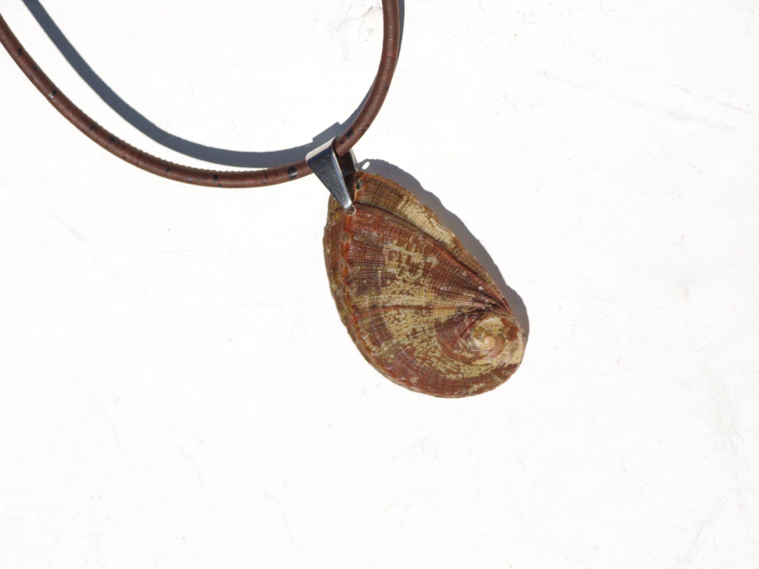 beau pendentif coquillage ormeau auburn sur un tour de cou en liège marron