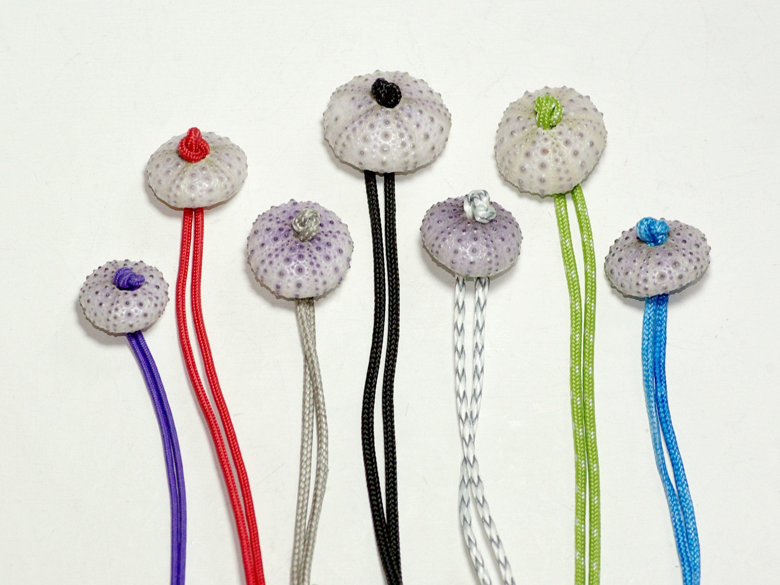 une collection de bracelets en bout marins de différentes couleurs et des oursins blancs