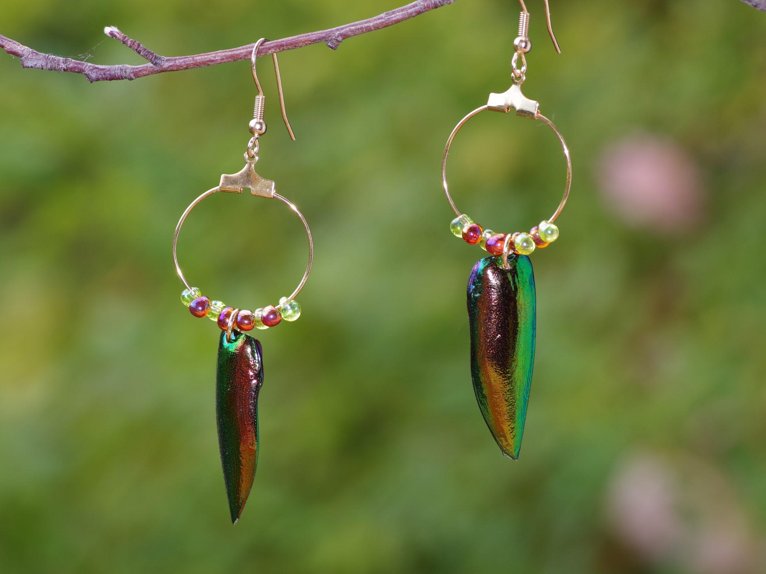 boucles d'oreilles avec un élytre de scarabée sous un anneau dorés et des perles de verre assorties à l'élytre