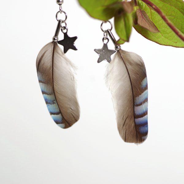 boucles d'oreilles en plumes de geai rayées bleues, une petite étoile en inox accompagne la plume.