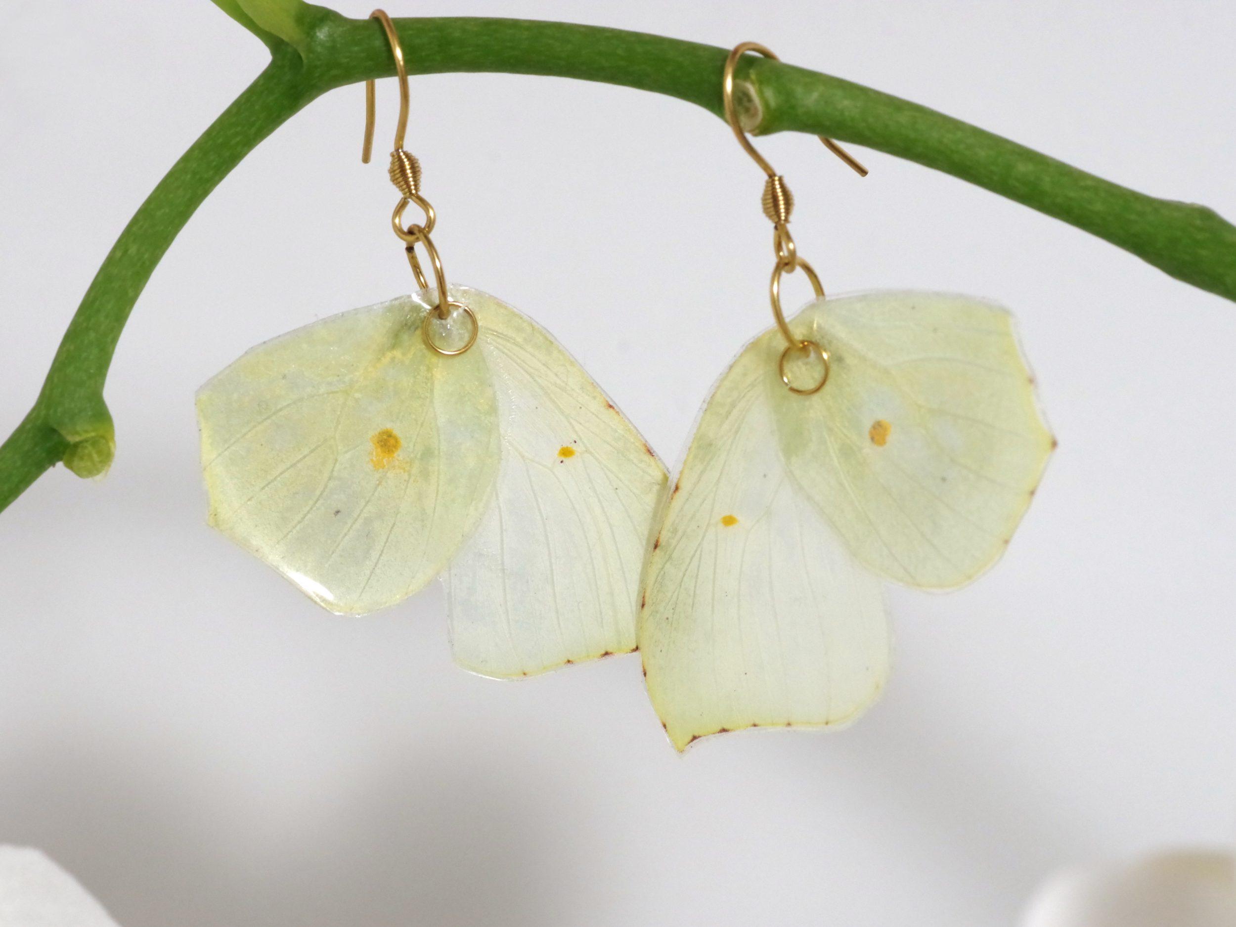 """boucles d'oreilles en ailes de papillon """"citron"""" jaune très pale"""